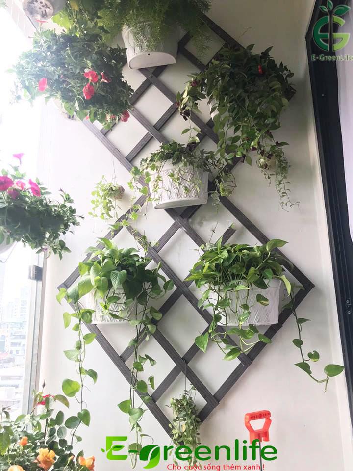 Tường ban công được trang trí bằng giàn leo gỗ nhựa composite loại đan chéo
