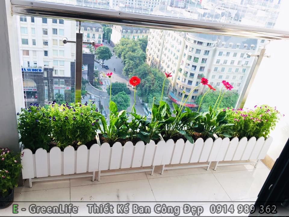 Ban công được trang trí bằng chậu hàng rào composite trắng trồng hoa