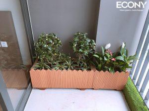 chau-hang-rao-chau-go-nhua-eco-022-4