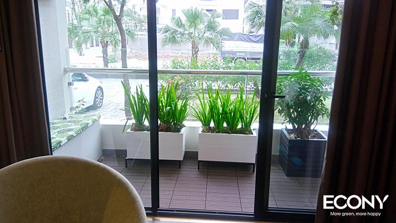 chau-hang-rao-chau-go-nhua-eco-022-6