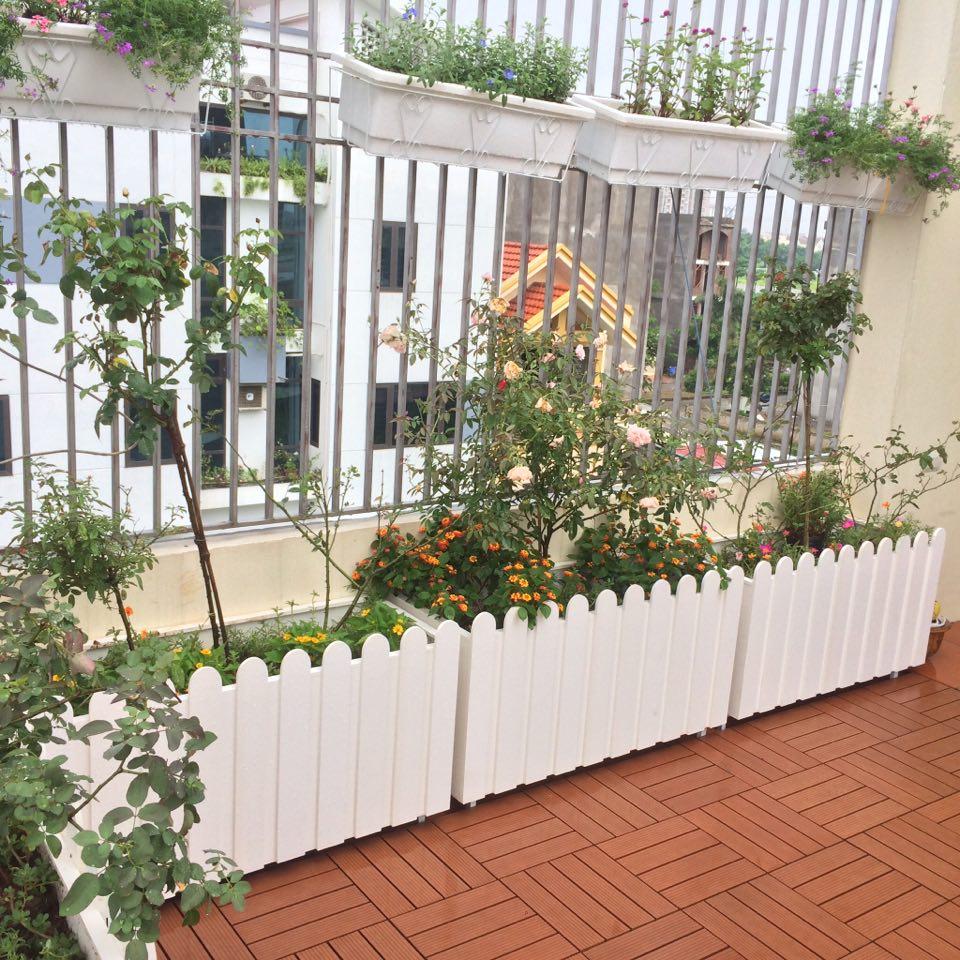 Chậu hàng rào composite trồng cây hoa ban công