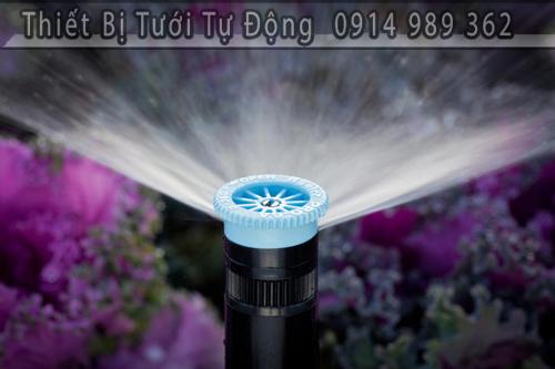 Béc tưới pop-up spray. Chuyên dùng cho tưới cỏ sân vườn, tưới cảnh quan biệt thự